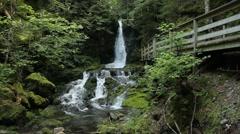 Dickson Falls. Stock Footage