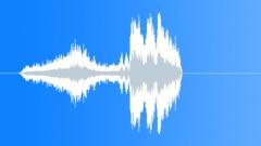 Car approach & skid. - sound effect