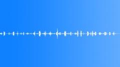 Bush atmosphere, Kapiti Island, NZ (motorboat in distance) - sound effect
