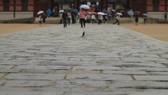 Magpie tiptoeing on the stone road of a Gwanghwamun(Heungyemun) on a rainy day Stock Footage