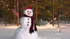 Happy snowman Stock Footage