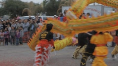 Chinese Dragon Performance #2 - stock footage