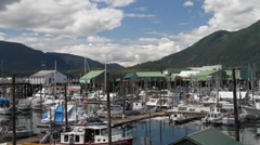 Marina and cannery Petersburg Stock Footage