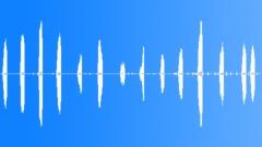 WormEatingWarble57029 Sound Effect