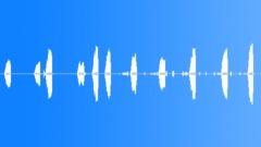 WormEatingWarble67054 Sound Effect
