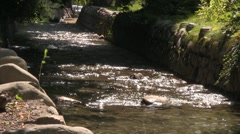 Beautiful water flow in the river Stock Footage