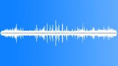 FloridaPineWoods72056 Sound Effect