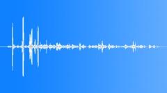 GalapagosFurSeal87026 - sound effect
