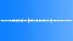 GiraffeFeedinga71121 Sound Effect