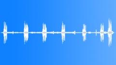 IndigoBuntingMC67052 - sound effect