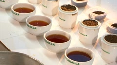 Tea Taster Evaluating Teas 2 Stock Footage