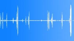 Stock Sound Effects of HawaiianGooseCu55221