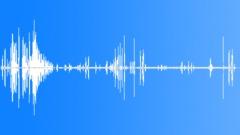Stock Sound Effects of HawaiianGooseCu53166