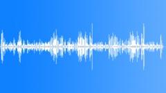 Stock Sound Effects of HawaiianGooseCu15248