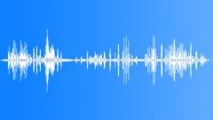Stock Sound Effects of HawaiianGooseCu15246