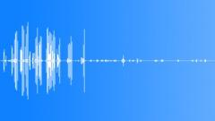 HawaiianGooseCu15243 Äänitehoste