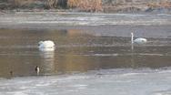 Winter lake Stock Footage