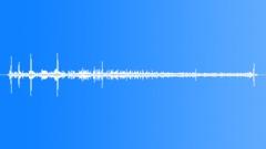 GreatCrestedGreb63125 Sound Effect