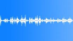 GannetColonyVa95158 - sound effect