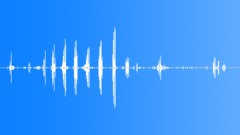 MoorhenMcuagita23054 Sound Effect