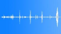 MandrillBaboonG13060 - sound effect