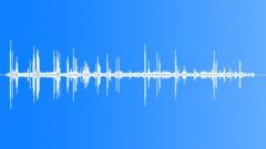 MuteSwanCallsc25052 - sound effect