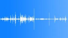 MuteSwanFeeding2104 - sound effect
