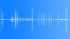NileCrocodileCu90183 - sound effect