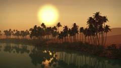 (1273A) Egyptian sahara desert sand dunes palms oasis sunset 1/2 Edit Series Stock Footage