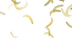 Banana Stock Footage