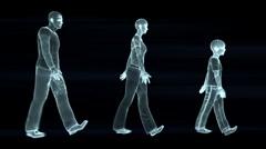 Family walk, seamless loop, wireframe Stock Footage