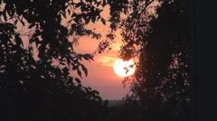 Stock Video Footage of Beautiful sunset among trees