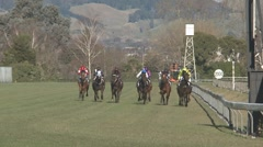 Horse race finish line Stock Footage