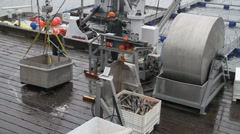 Salmon hatchery ,processing Stock Footage