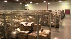 walk-through of DEA Marijuana holding facility (HD) c - stock footage