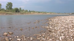River prut 5 Stock Footage