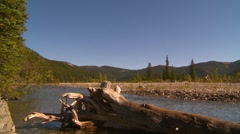 Elbow river and faded log with forest hills in bg Stock Footage