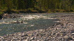 Nature, Elbow river and cobble Stock Footage
