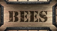 Bees on wooden stamp Stock Footage