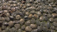 Water stream texture 03 Stock Footage