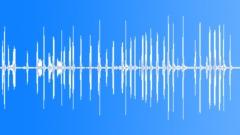 Guinea Fowl - sound effect
