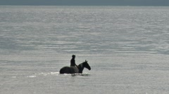 Riding Horse into Bay Waters 1 Stock Footage
