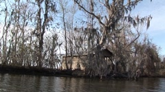 Shack on Bayou in Louisana Stock Footage