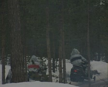 Snowmobiles drive though trees Stock Footage
