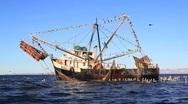 Mexican Shrimp Trawler Stock Footage