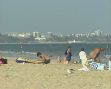 Seagulls and people share the beach Stock Footage