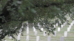 Stock Footage - Arlington Cemetery Grounds. - stock footage
