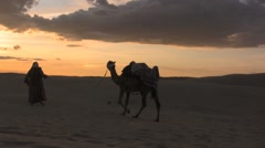 Camel being lead to the sunset of the sahara desert sand dunes - stock footage