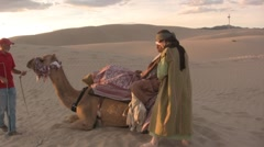 Camel getting up in the sahara desert sand dunes - stock footage