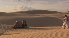Camel in the middle east sand dunes Stock Footage